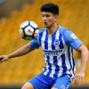 Wolverhampton Wanderers vs Brighton and Hove Albion Prediction 20 April 2019